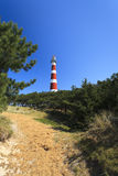 белизна маяка красная Стоковые Фотографии RF