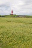 белизна маяка красная Стоковые Фото