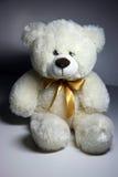 белизна медведя Стоковые Изображения
