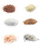белизна моря солей собрания экзотическая изолированная Стоковая Фотография RF