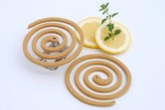 белизна москита лимона травы fumigator предпосылки Стоковая Фотография RF