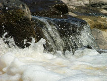 белизна мытья Стоковое Фото
