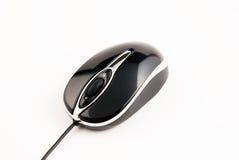 белизна мыши компьютера предпосылки Стоковые Фотографии RF