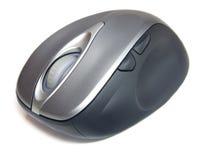 белизна мыши предпосылки изолированная компьютером Стоковая Фотография RF