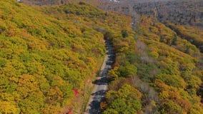 белизна осени изолированная принципиальной схемой Воздушная съемка дороги среди холмов с сериями желтых и красных покрашенных дер видеоматериал