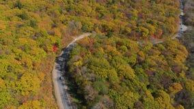 белизна осени изолированная принципиальной схемой Воздушная съемка дороги среди холмов с сериями желтых и красных покрашенных дер сток-видео