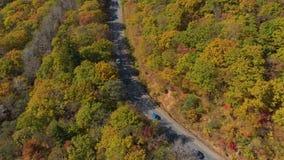 белизна осени изолированная принципиальной схемой Воздушная съемка дороги среди холмов с сериями желтых и красных покрашенных дер акции видеоматериалы