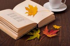 белизна осени изолированная принципиальной схемой Кофейная чашка, книга и покрашенные листья стоковые изображения rf