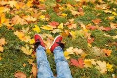 белизна осени изолированная принципиальной схемой Ноги нося красные ботинки на зеленой траве Стоковые Фото
