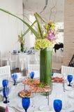 белизна партии орхидеи Стоковое Изображение