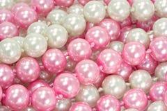 белизна перл розовая Стоковое Изображение RF