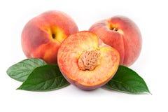 белизна персика листьев предпосылки свежая Стоковые Изображения RF