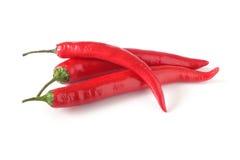 белизна перцев chili 3 Стоковая Фотография RF