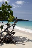 белизна пляжа Стоковое Изображение