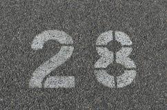 Белизна 28 покрашенная на смолке Стоковые Изображения