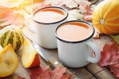 Белизна 2 покрыла эмалью чашки сока тыквы, тыкв и упаденных мам стоковое фото rf