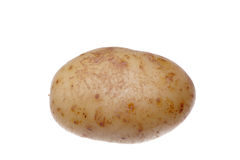белизна помытая картошкой стоковые изображения