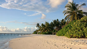 белизна порошка пляжа Стоковые Изображения