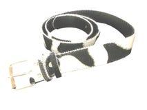 белизна пояса черная Стоковое фото RF
