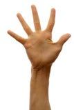 белизна предпосылки изолированная рукой стоковые фото