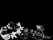белизна предпосылки черная Стоковые Фото