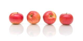 белизна предпосылки яблок зрелая Стоковые Изображения RF