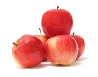 белизна предпосылки яблок красная Стоковое Изображение RF