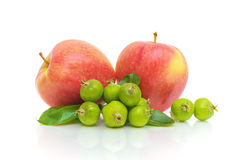 белизна предпосылки яблок Стоковые Фото