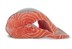 белизна предпосылки salmon Стоковое Изображение RF