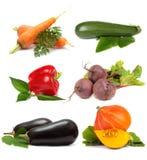 белизна предпосылки установленная vegetable Стоковая Фотография