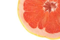белизна профиля грейпфрута Стоковые Фотографии RF