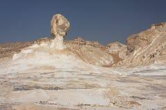 белизна пустыни Стоковые Фотографии RF