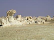 белизна пустыни Стоковое Изображение RF