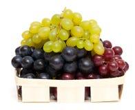 белизна разнообразия виноградины предпосылки различная Стоковые Фото