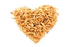 белизна риса предпосылки Стоковые Фото
