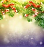 белизна рождества красная Стоковое Фото