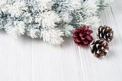 белизна рождества предпосылки Ветви ели рождества с украшением скопируйте космос Стоковая Фотография