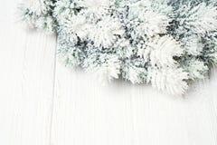 белизна рождества предпосылки Ветви ели рождества с украшением Стоковые Фотографии RF