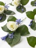 белизна розы корсажей коробки Стоковые Изображения