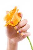 белизна розы ногтей Стоковые Изображения