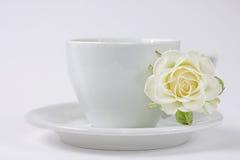 белизна розы чашки coffe стоковое изображение rf