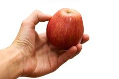 белизна руки предпосылки яблока Стоковые Изображения RF