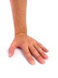 белизна руки предпосылки Стоковая Фотография