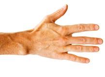 белизна руки Стоковые Изображения