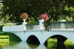 Белизна сдобрила footbridge над зеленым озером в парке стоковые фотографии rf