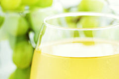 белизна сока виноградины Стоковые Фотографии RF