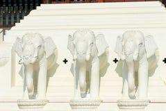 белизна статуи слона головная Стоковая Фотография RF