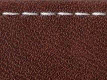белизна стежком Стоковое Изображение RF