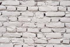 белизна стены Стоковое фото RF