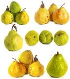 белизна субстрата груши s предпосылки стеклянная сочные яркие ые-зелен и желтые груши на изолированной предпосылке Стоковое фото RF